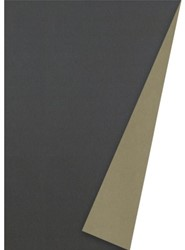 APPARAATROL TAUPE/CHAMPAGNE 100MX50CM 1 Rol
